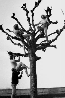 """Pleinair Rügen 1979, Aktion """"Baumbesteigung"""". Thomas Ranft, Michael Morgner, Gregor-Torsten Kozik (Schade), Wolfgang E. Biedermann; Fotografie von Ralf-Rainer Wasse"""