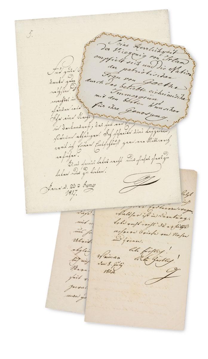 Johann Wolfgang Goethes Korrespondenz mit der Schwiegertochter Ottilie