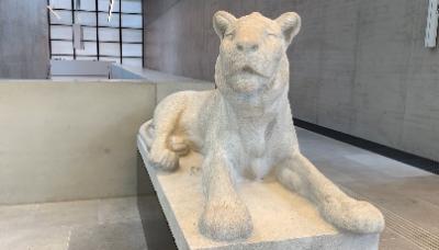 Liegender Löwe in der James Simon Galerie; Foto: Kulturstiftung der Länder